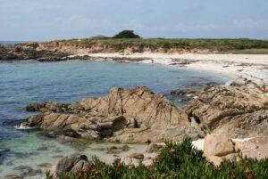 Pebble Beach property management